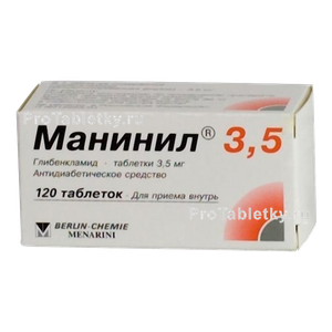 maninil-photo-7934_s.png